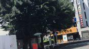 志村けんの木とは 何の木 種類 名前 由来 場所 東村山 どこ